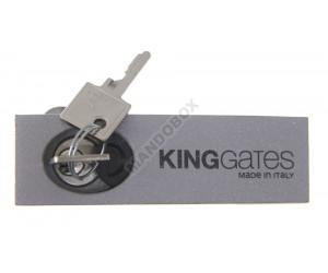 Desbloqueo KING GATES DYN